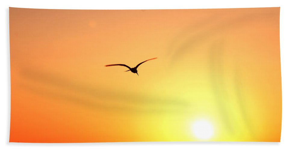 Sun Beach Towel featuring the photograph Into the Sun by Christine Stonebridge