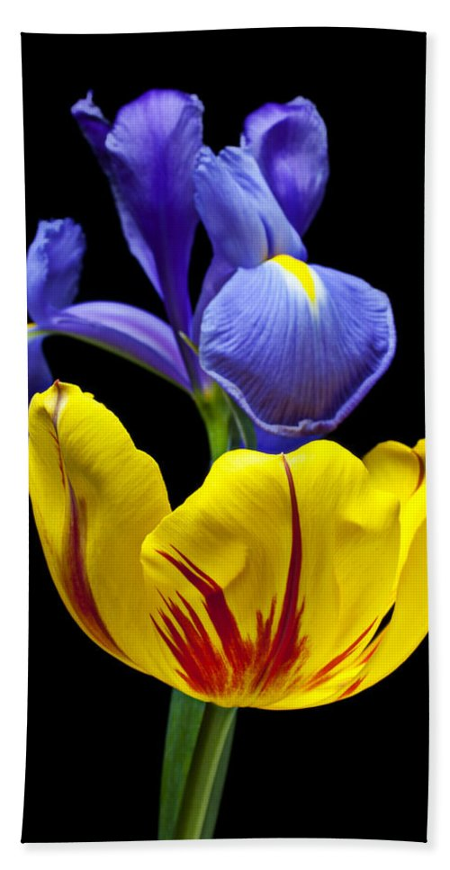 Yellow Beach Towel featuring the photograph Iris And Tulip by Garry Gay