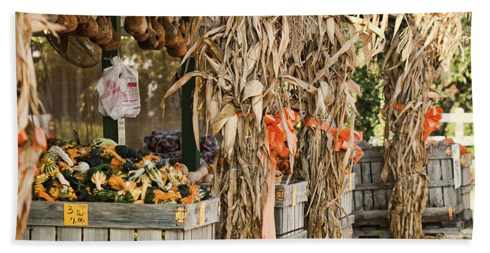 Isoms Orchard Beach Towel featuring the photograph Isoms Orchard In Fall Regalia by Kathy Clark