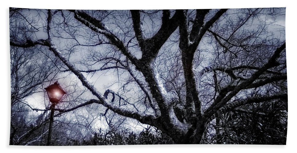 Light Beach Towel featuring the photograph It Happend By The Lamp Post by Donna Blackhall