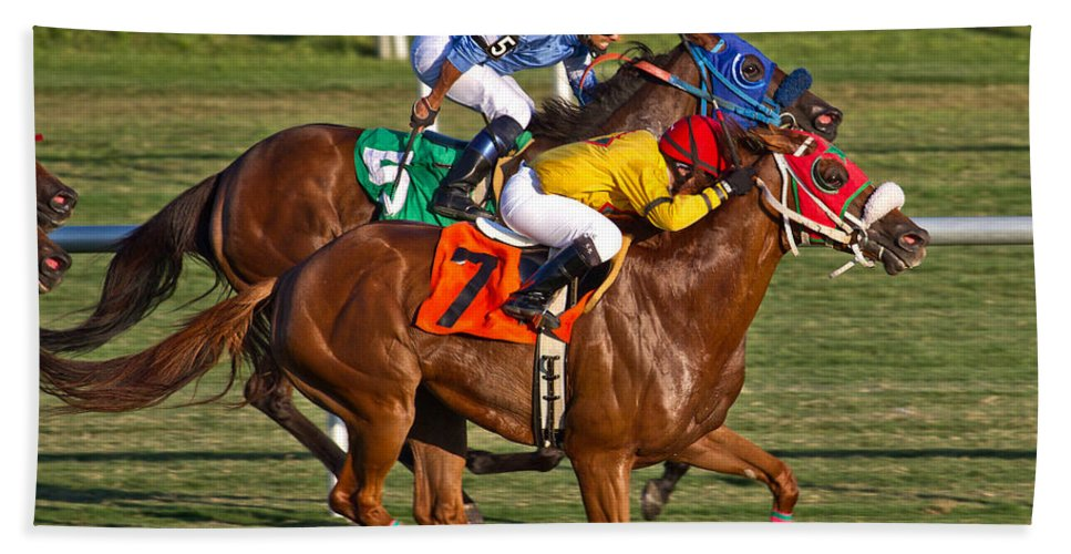 Horse Beach Towel featuring the photograph It Takes Talent by Betsy Knapp