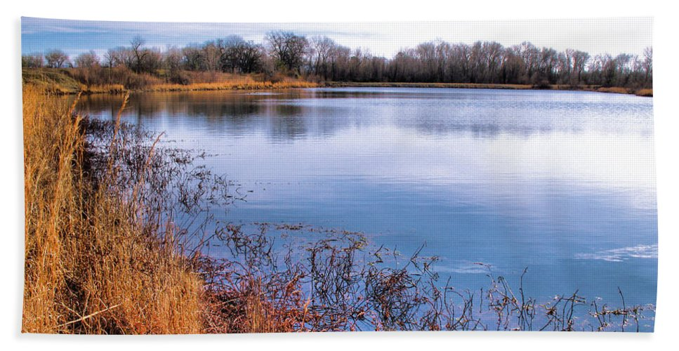 Pond Beach Towel featuring the photograph January Bass Pond 2 2012 by Joyce Dickens