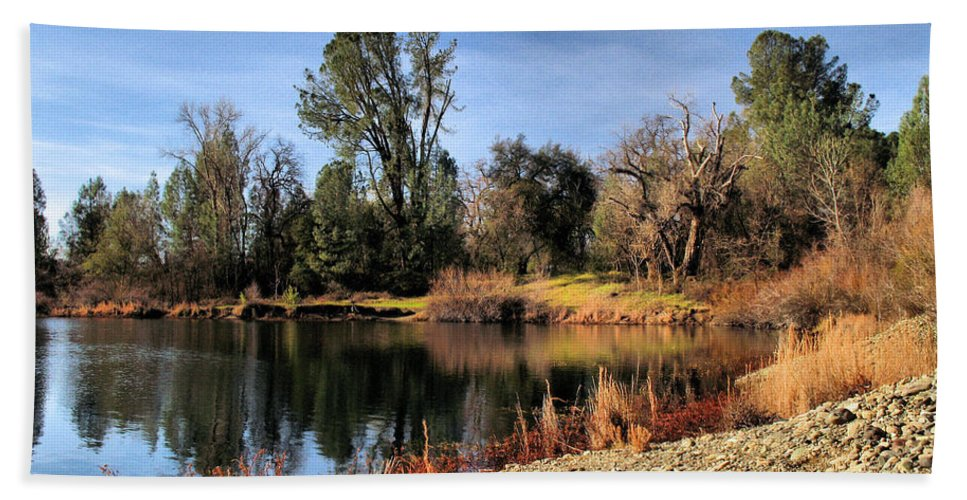Pond Beach Towel featuring the photograph January Bass Pond 2012 by Joyce Dickens