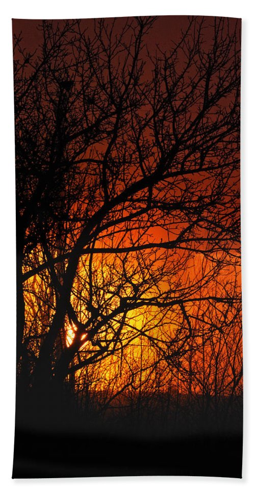 Sunrise Beach Towel featuring the photograph Just A Pretty Sunrise by Susan Capuano