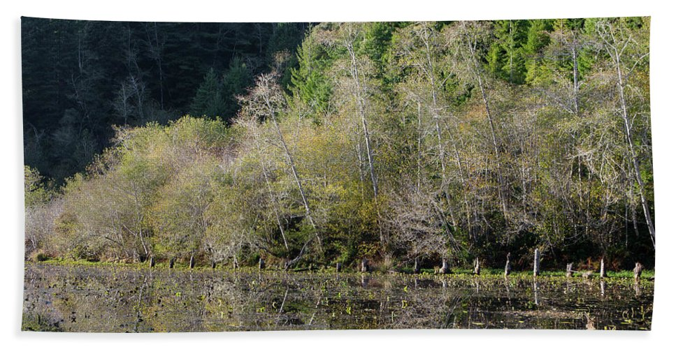 Pond Beach Towel featuring the photograph Klamath Pond by Greg Nyquist