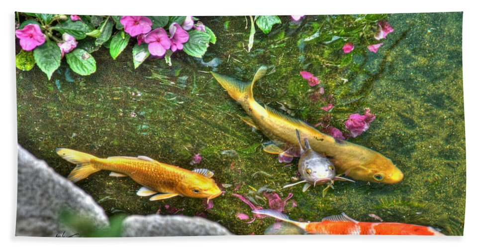 Koi Beach Towel featuring the photograph Koi Fish Poses by Mark Valentine