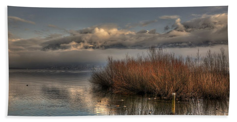 Lake Beach Towel featuring the photograph Lake With Pampas Grass by Mats Silvan