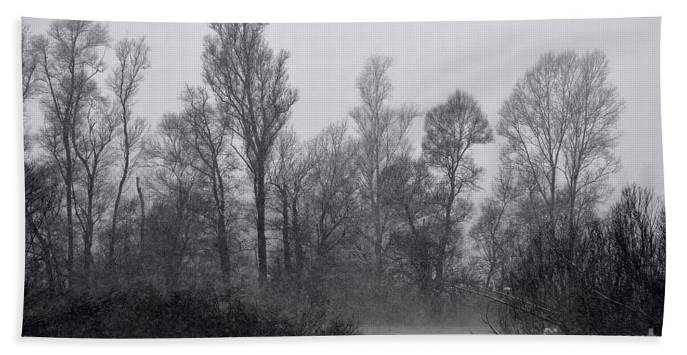 Swan Beach Towel featuring the photograph Lake With Trees by Mats Silvan