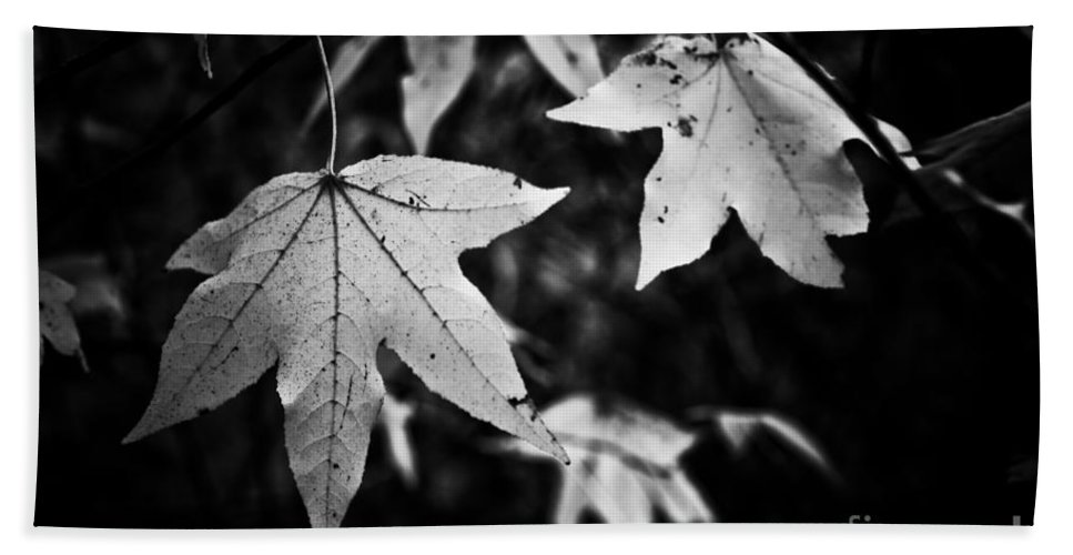 Leaves Beach Towel featuring the photograph Leaves Without Color by Kim Henderson
