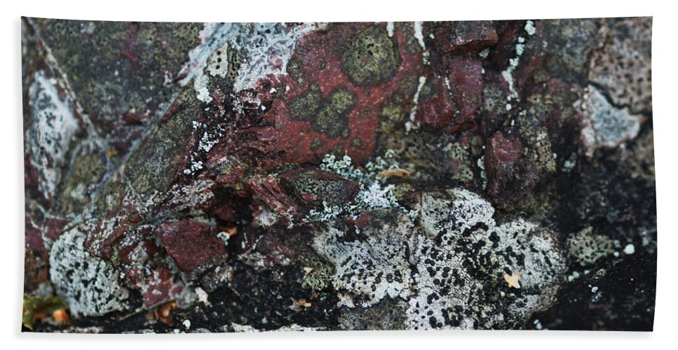 Abstract Beach Towel featuring the photograph Lichen Abstract II by Susan Capuano