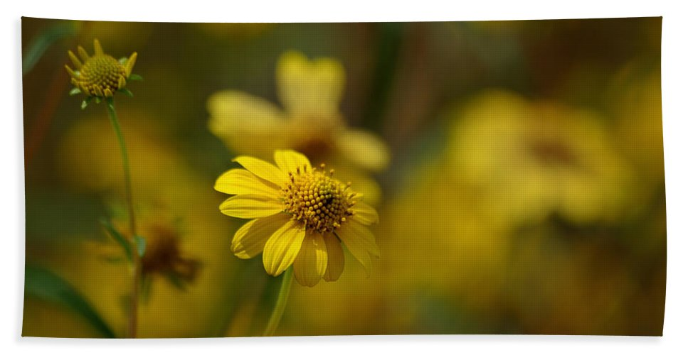 Flower Beach Towel featuring the photograph Light Hearted by Vicki Pelham
