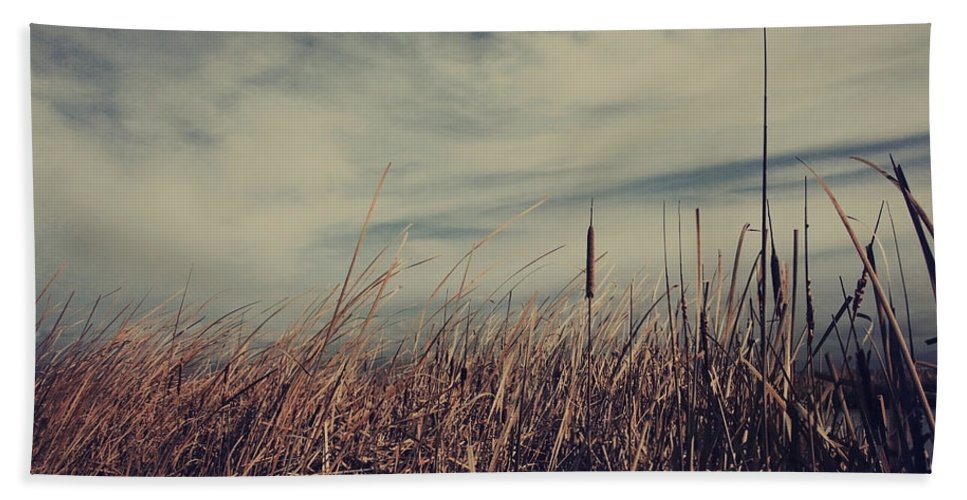 Cattails Beach Towel featuring the photograph Like The Way You Used To Run Your Fingers Through My Hair by Laurie Search