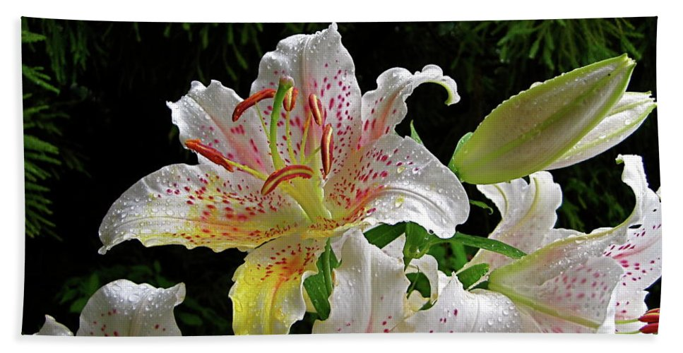 Lily Beach Towel featuring the photograph Lilies In The Rain by Byron Varvarigos
