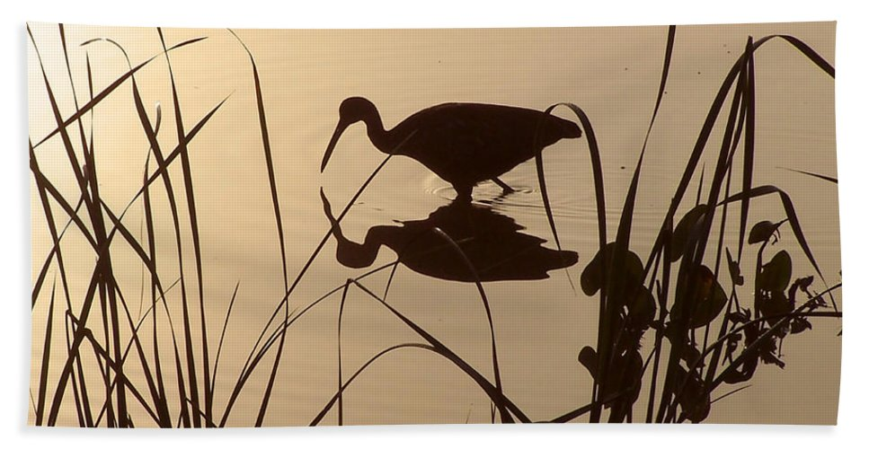 Nature Beach Towel featuring the photograph Limpkin At Dawn by Peg Urban