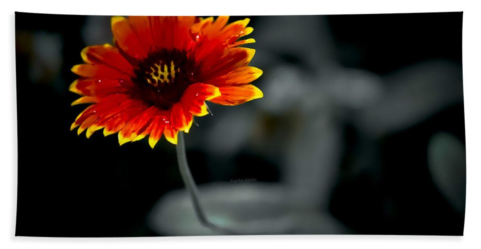 Wildflower Beach Towel featuring the photograph Lonely Tears by DigiArt Diaries by Vicky B Fuller