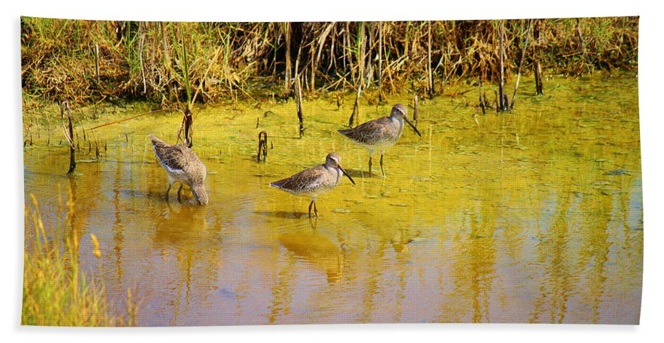 Roena King Beach Towel featuring the photograph Long Billed Dowitchers Migrating by Roena King