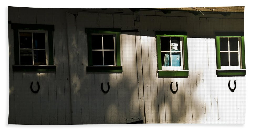 Door Beach Towel featuring the photograph Lotsa Luck by Trish Tritz