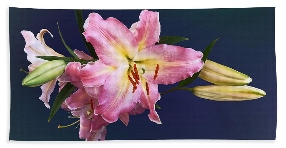 Lily Beach Towel featuring the photograph Lovely Pink Lilies by Susan Savad