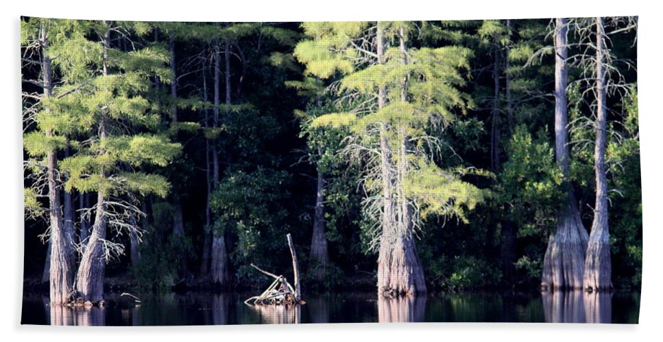 Water Beach Towel featuring the photograph Lunker Lake by Travis Truelove