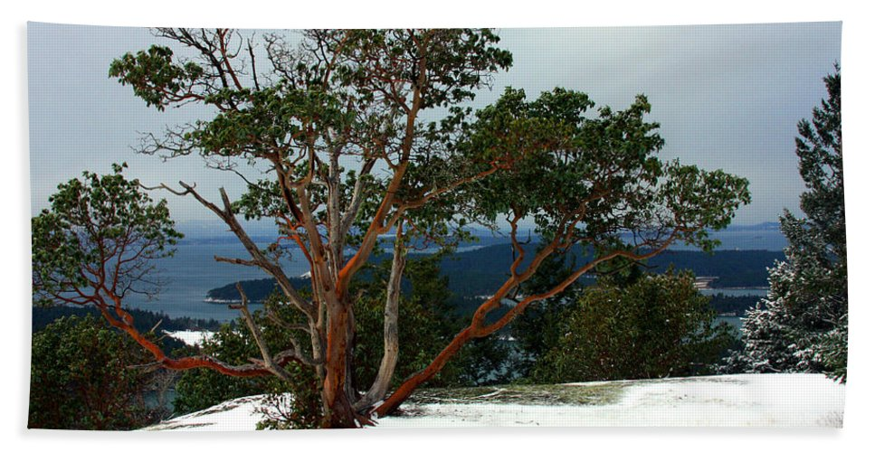 San Juan Island Beach Towel featuring the photograph Madrone On Young Hill by Marie Jamieson