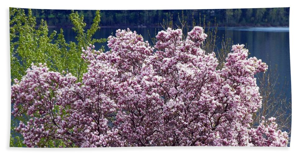 Magnolia Tree Beach Towel featuring the photograph Magnolia By The Lake by Will Borden