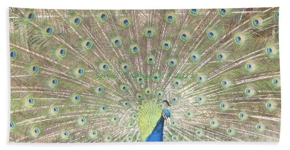 Colourful Beach Towel featuring the photograph Majestic Peacock by Sonali Gangane