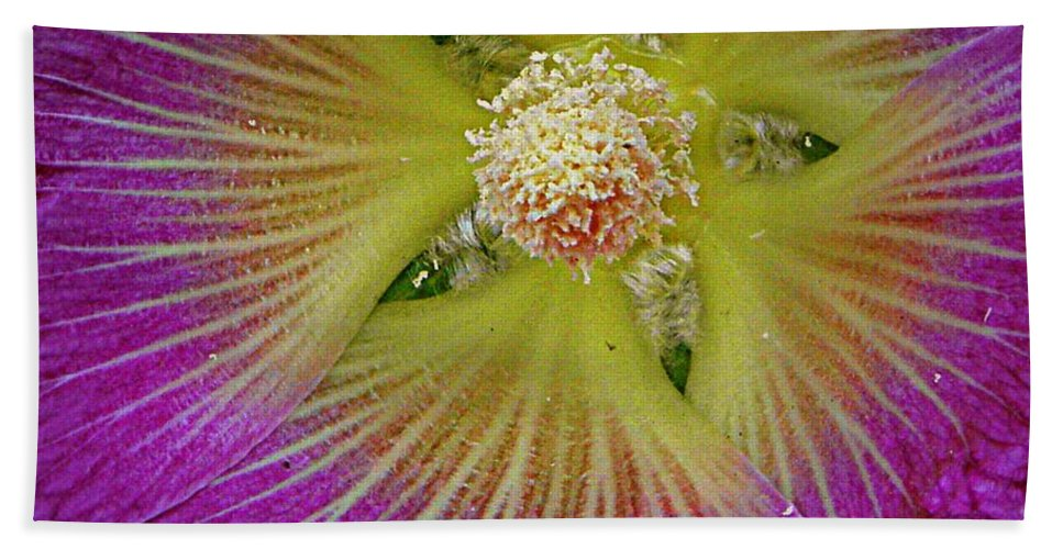 Nature Beach Towel featuring the photograph Malva Middle by Chris Berry