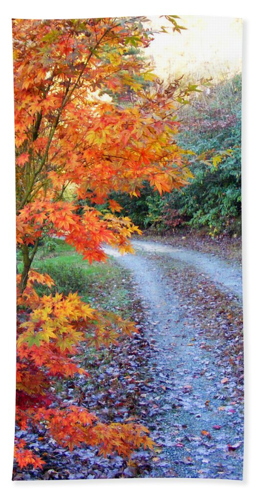 Maple Tree Beach Towel featuring the photograph Maple Road by Duane McCullough