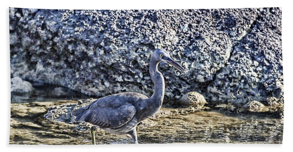 Reef Egret Beach Towel featuring the photograph Matching Colors by Douglas Barnard