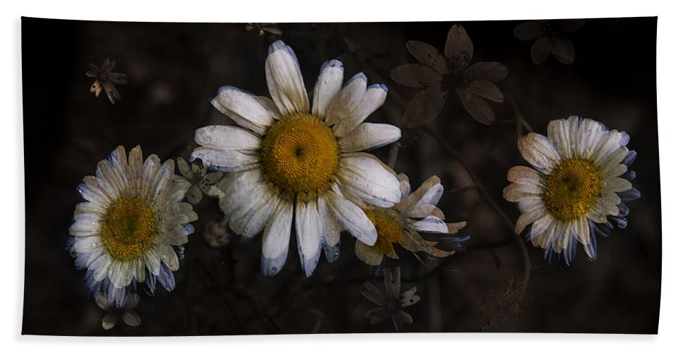 Floral Beach Towel featuring the photograph May Evenings by Ron Jones