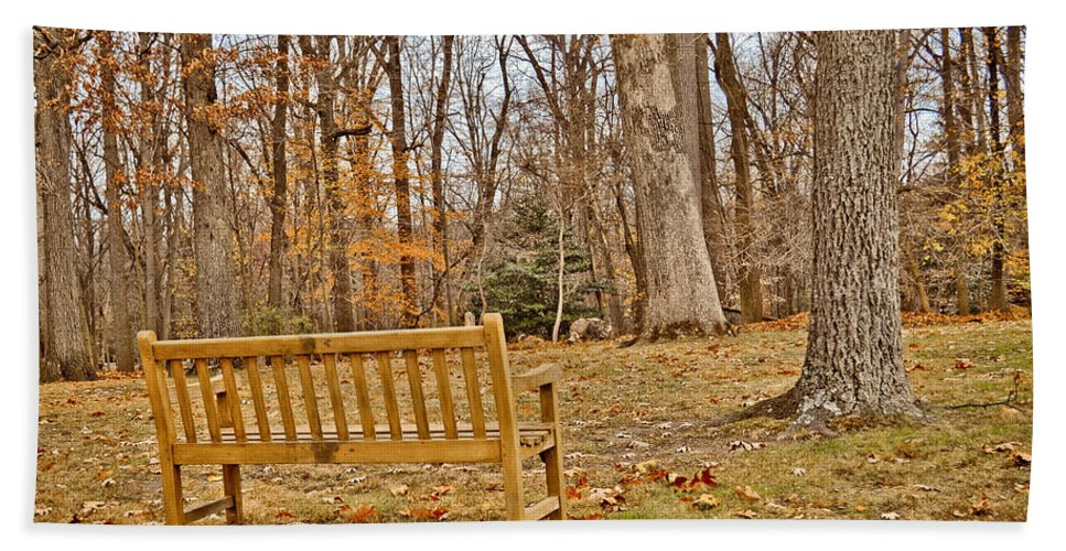 Meditate Beach Towel featuring the photograph Meditation At Valley Forge by Trish Tritz