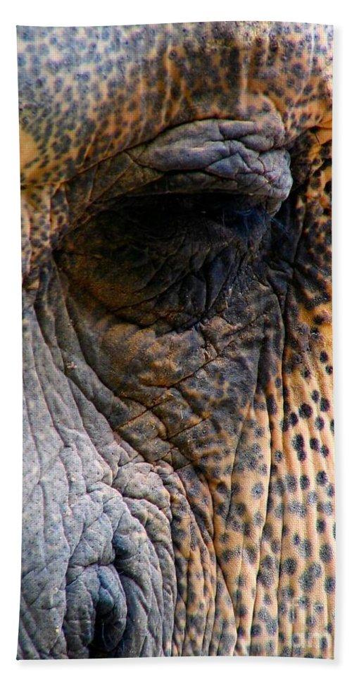 Elephant Beach Towel featuring the photograph Memory by Art Dingo