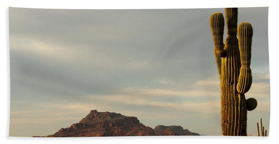 Arizona Beach Towel featuring the photograph Mesa by Bryan Noll