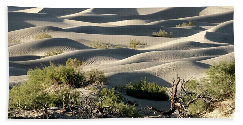 Mesquite Sand Dunes Beach Towel featuring the photograph Mesquite Sand Dunes by Wes and Dotty Weber