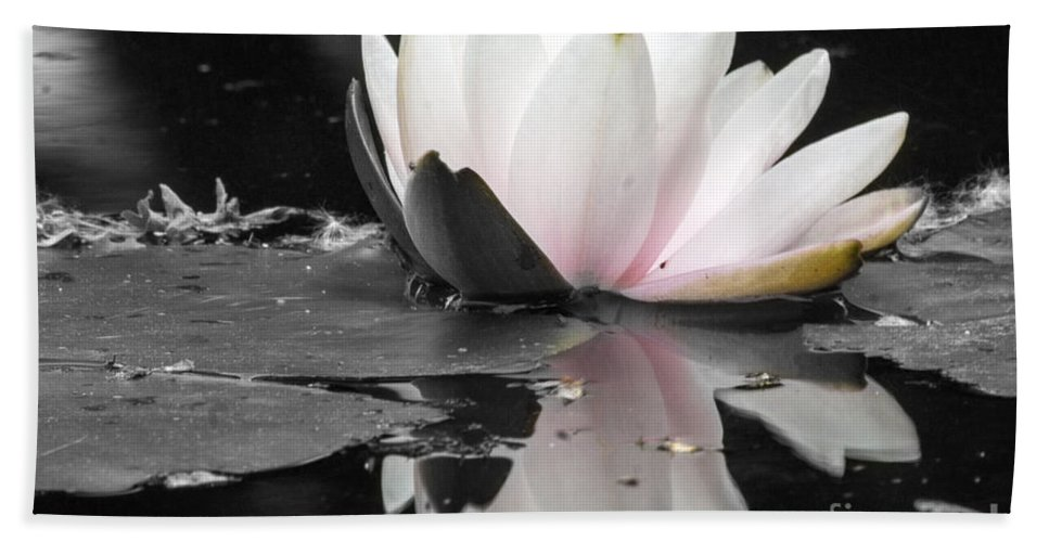 Waterlily Beach Towel featuring the photograph Monochrome Lily by Darleen Stry