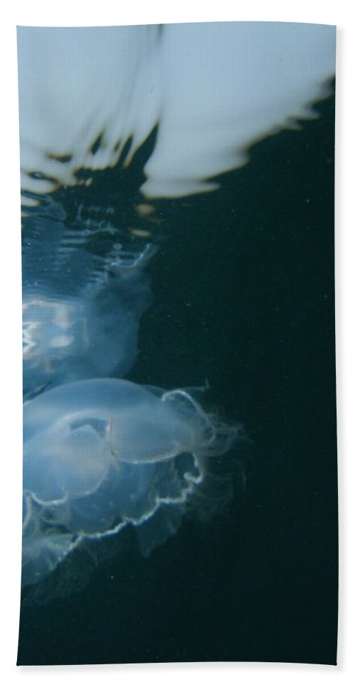 Ocean Water Sunlight Sea Blue Pink Jellyfish Wildlife Nature Beach Towel featuring the photograph Moon Jelly Ripples by Kimberly Mohlenhoff