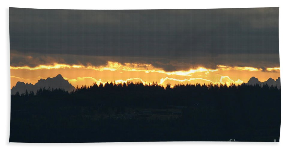 Morning Beach Towel featuring the photograph Morning Gold by Tap On Photo