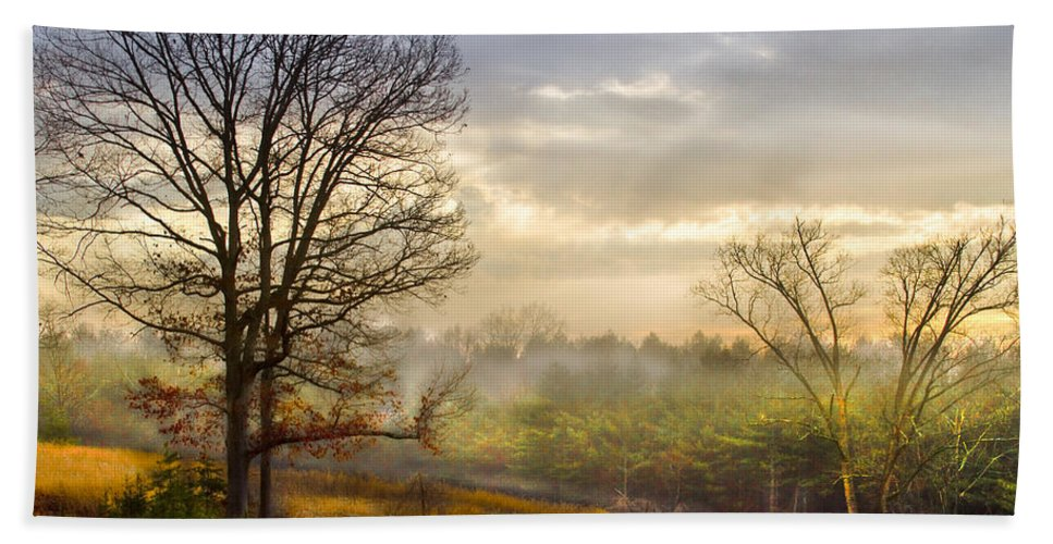 Appalachia Beach Towel featuring the photograph Morning Trees by Debra and Dave Vanderlaan