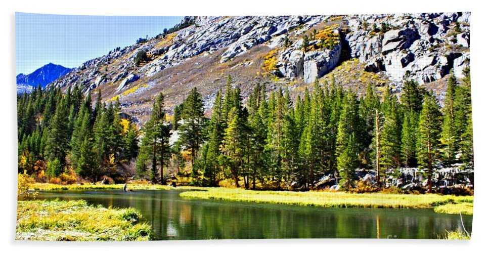 Bishop Beach Towel featuring the photograph Mountain Pond by Tommy Anderson