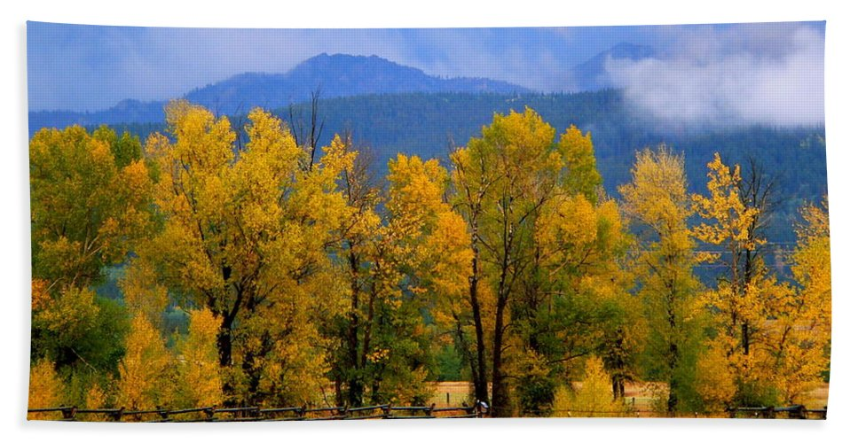 Cottonwood Beach Towel featuring the photograph Murmur Of The Cottonwoods by Eric Tressler