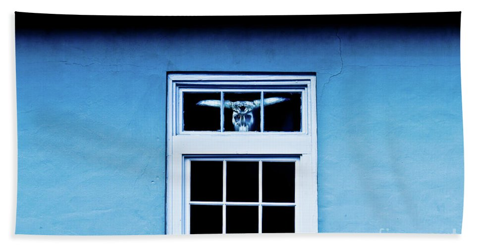 Cow Skull Beach Towel featuring the photograph Mysterious Cow Skull by Frances Hattier