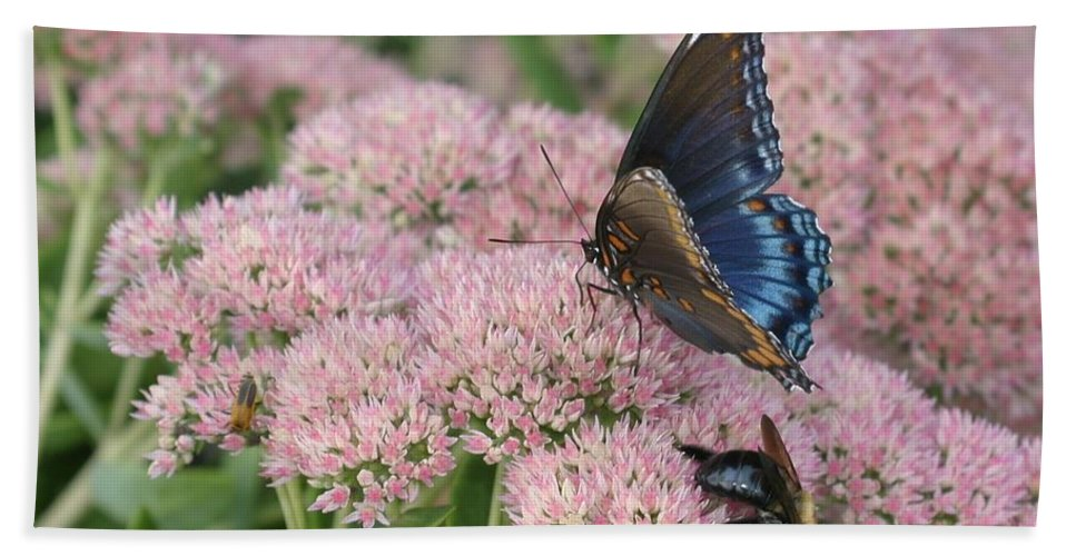 Butterfly Beach Towel featuring the photograph Nature Sharing by Living Color Photography Lorraine Lynch