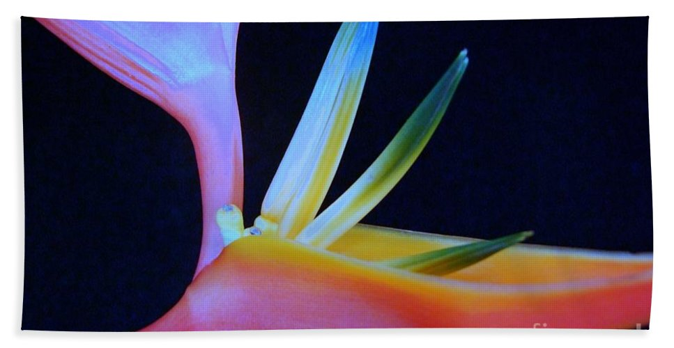 Flowers Beach Towel featuring the photograph Neon Heliconia by Mary Deal