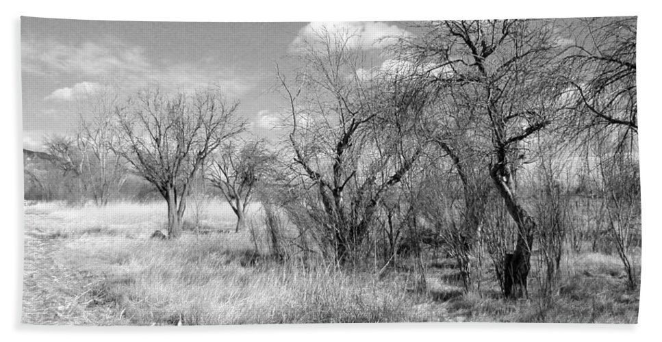 Landscape Beach Towel featuring the photograph New Mexico Series - Bare Beauty by Kathleen Grace