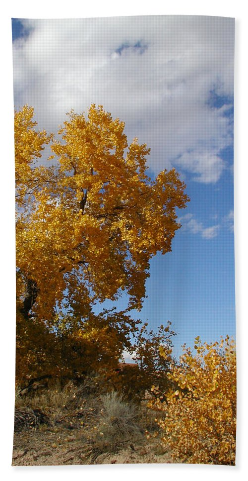 Landscape Beach Towel featuring the photograph New Mexico Series - Desert Landscape Autumn by Kathleen Grace