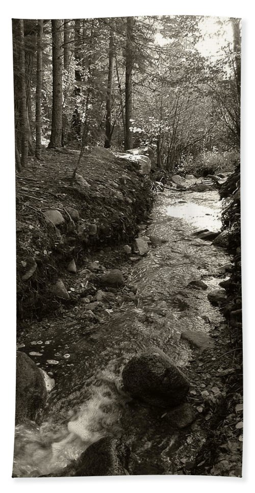 Mountain Beach Towel featuring the photograph New Mexico Series - Late Winter Streambed by Kathleen Grace