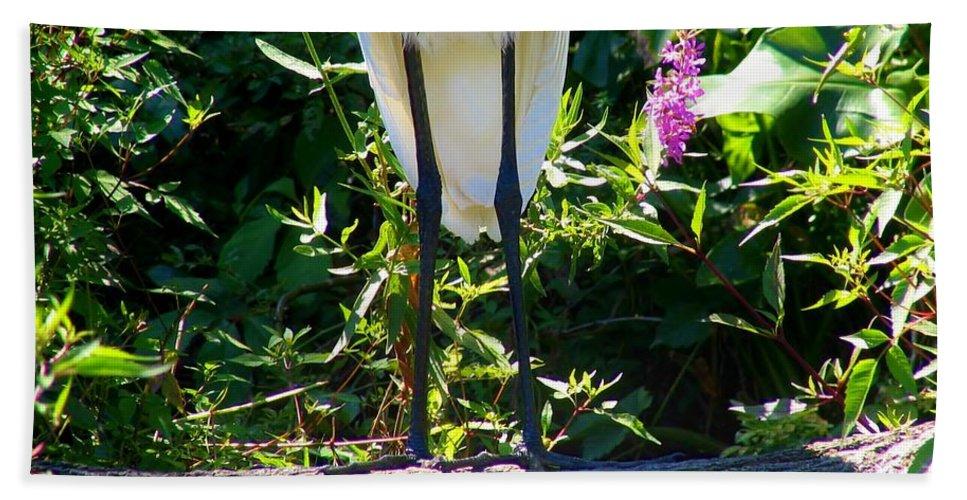 Egret Beach Towel featuring the photograph Nice Legs by Art Dingo
