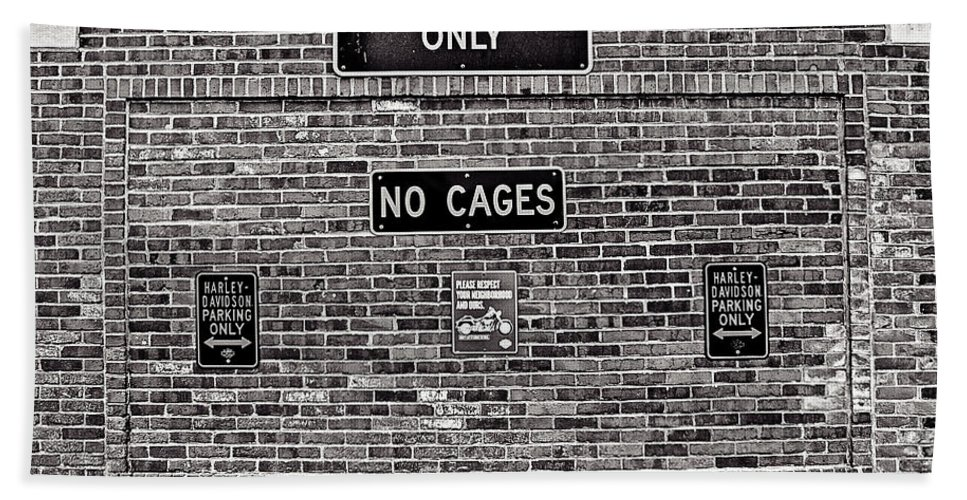 Cj Schmit Beach Towel featuring the photograph No Cages by CJ Schmit