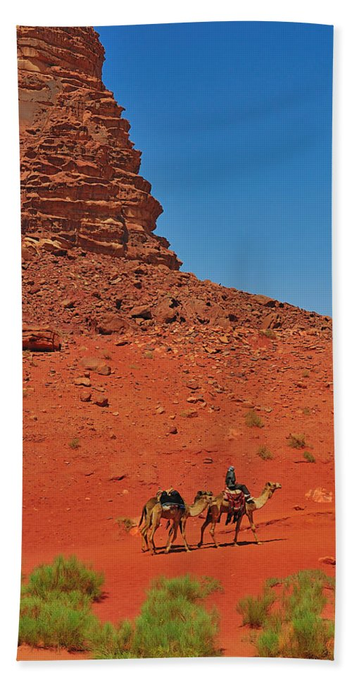 Jordan Beach Towel featuring the photograph Nubian Camel Rider by Tony Beck