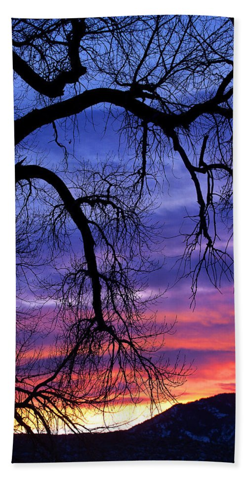 Cottonwood Beach Towel featuring the photograph Obeisance by Jim Garrison